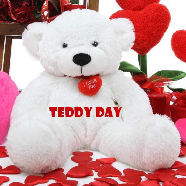 cute Happy Teddy Bear pic