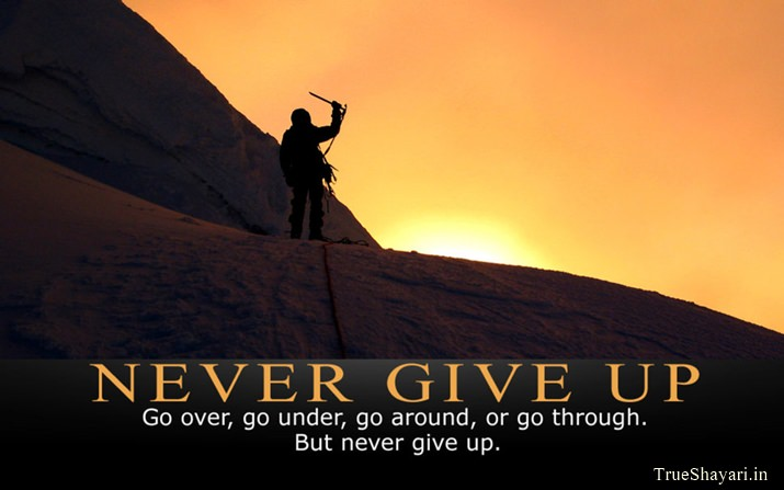 Never Give Up Life Picture with Quote