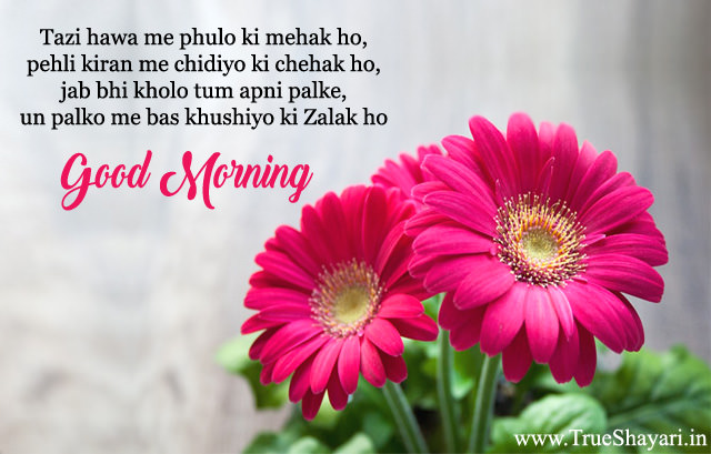 Good Morning shayari in hinglish