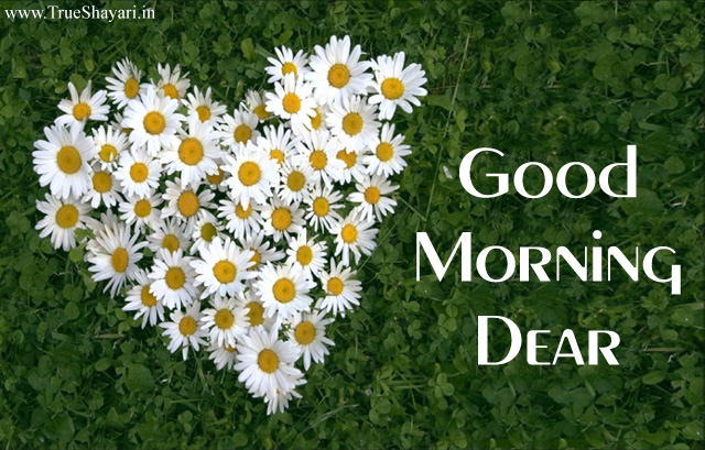 Gud Morning Dear with Flower Heart Pics