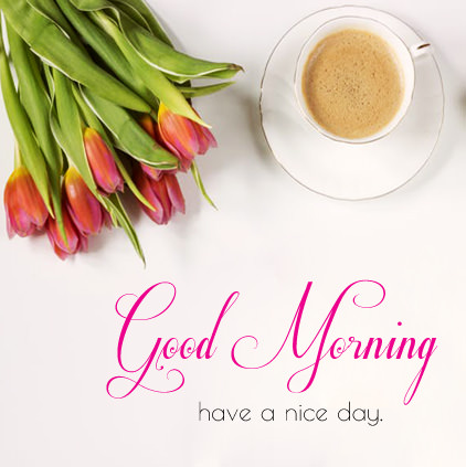 Have a nice day DP
