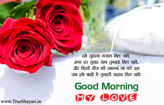 GOOD MORNING ROSE FLOWER SHAYARI