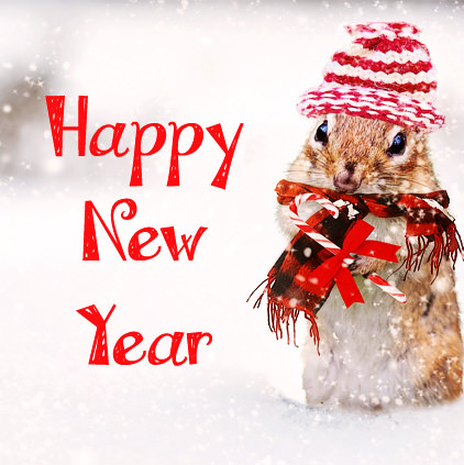 Cute Funny Happy New Year Photo
