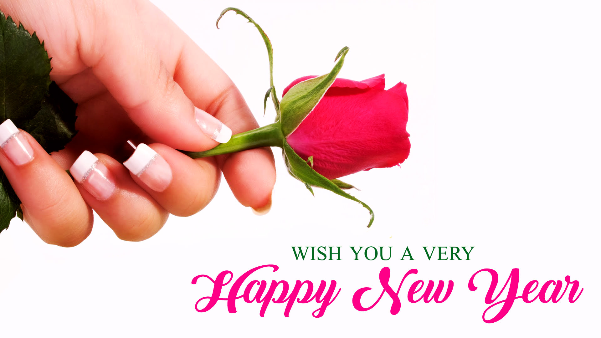 happy new year wishes wallpaper with rose
