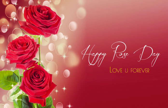 1st Day of Valentine Week Rose Day Pictures