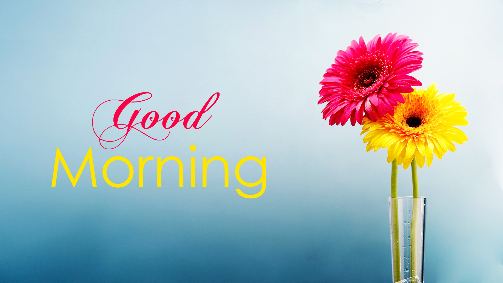 good morning wallpaper with flowers full hd 1920x1080 gm