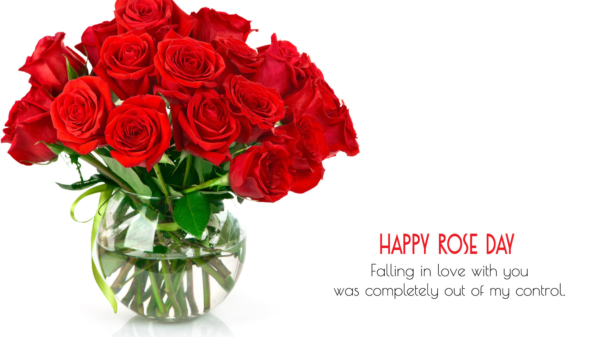 HD Rose Day Wallpapers