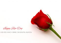 Happy Rose Day Wallpaper