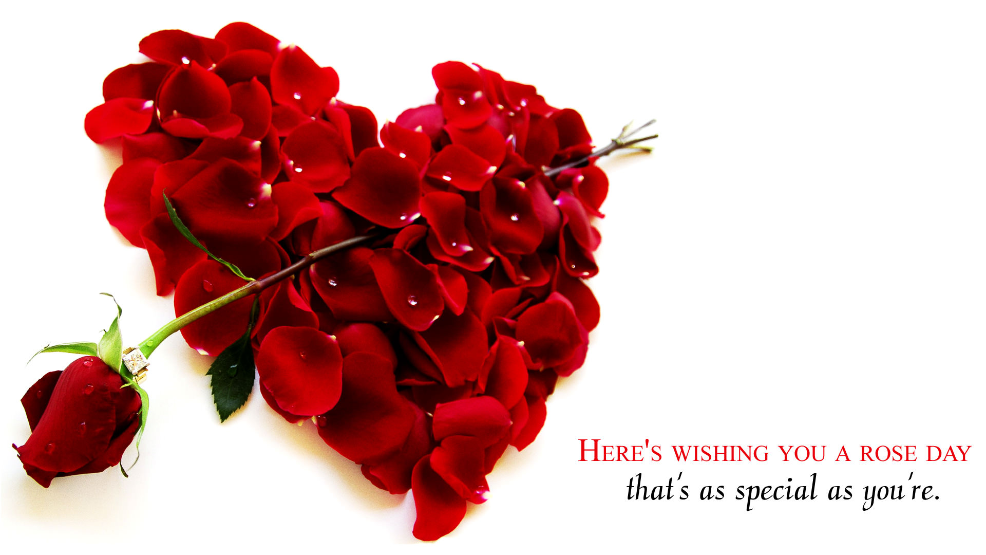 Rose Wallpaper with Red Flower Heart