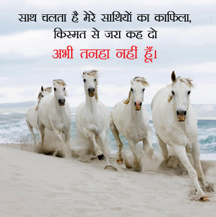 Attitude Horse Dp in Hindi
