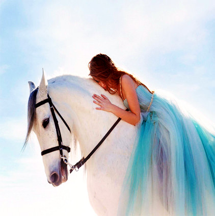 Beautiful White Horse with Girl