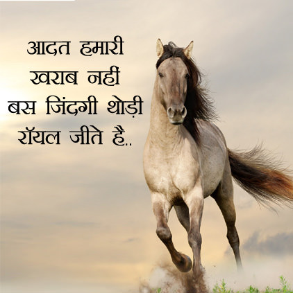 Horse Image in Hindi