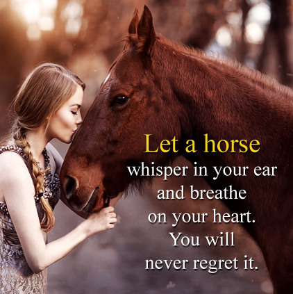 Horse Profile Picture Quote