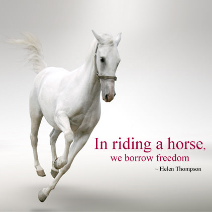 Horse Riding Images with Quotes