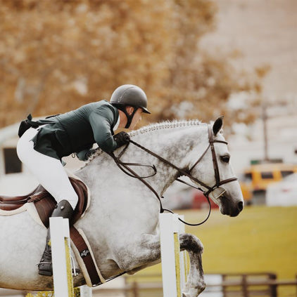 Horse Riding Racing Images HD