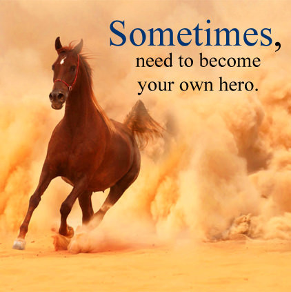 Inspirational Horse Lines Display Pics