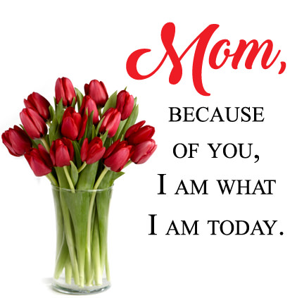 Mom Because of You I Am What I Am Today DP Image