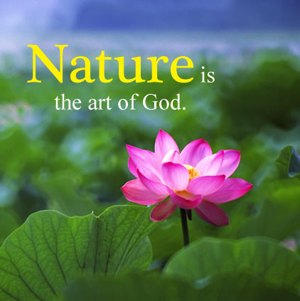 Beautiful Nature Message
