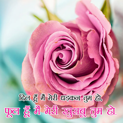 Flowers DP Images for Whatsapp Status in Hindi English with Quotes Msg