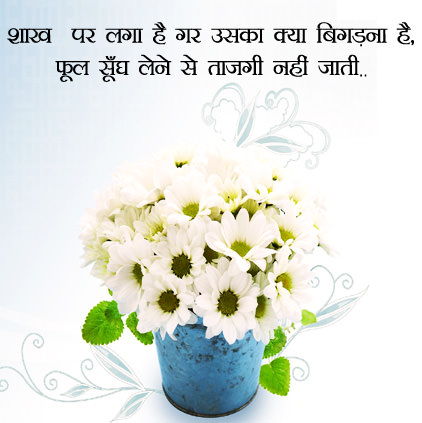 Flowers Images for Whatsapp in Hindi