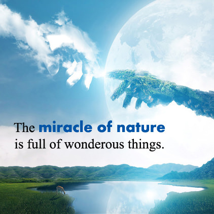 Miracle of Nature Images