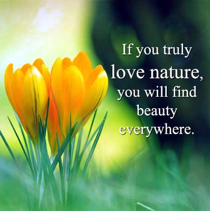 Nature Quotes with Images