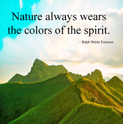 Quotes about Nature in the Image