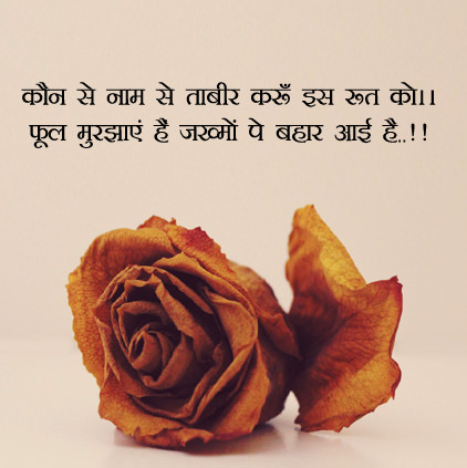 Sad Lines in Hindi on Phool