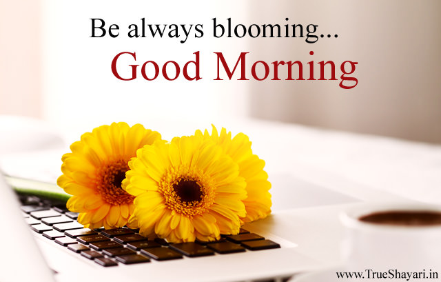 Be always blooming Flower Morning Wishes