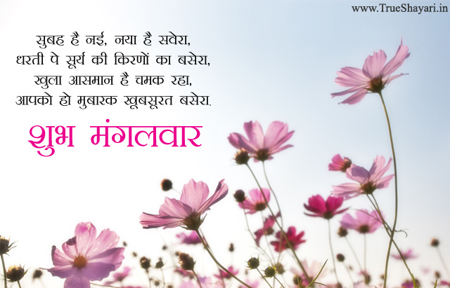 Happy Tuesday Shayari