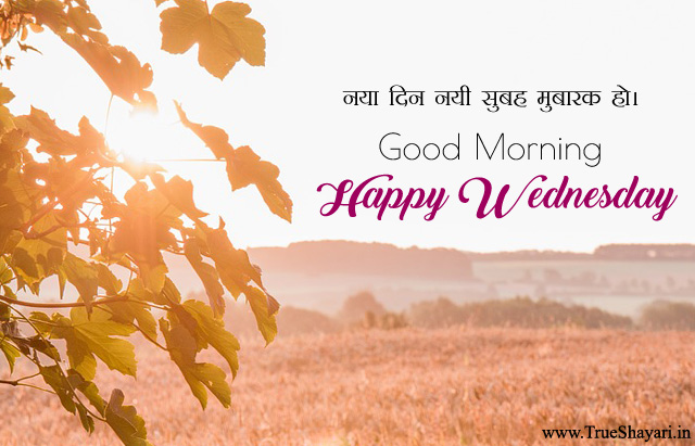 Happy Wednesday Quotes Image in Hindi