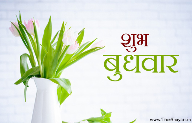 Happy Wednsday Images Hindi शभ बधवर फट Suprabhat