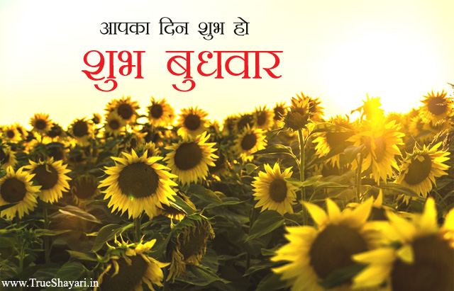 Wednesday Good Morning Image in Hindi