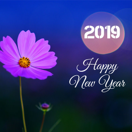 Happy New Year 2019 HD Whatsapp Images DP Status (17)