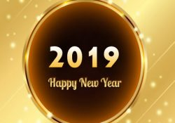 Happy New Year 2019 HD Whatsapp Images DP Status (5)