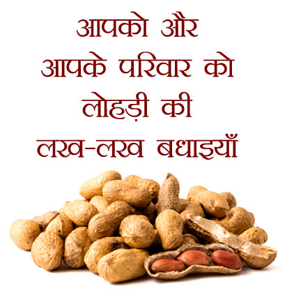 Lohri Wishes in Hindi Language