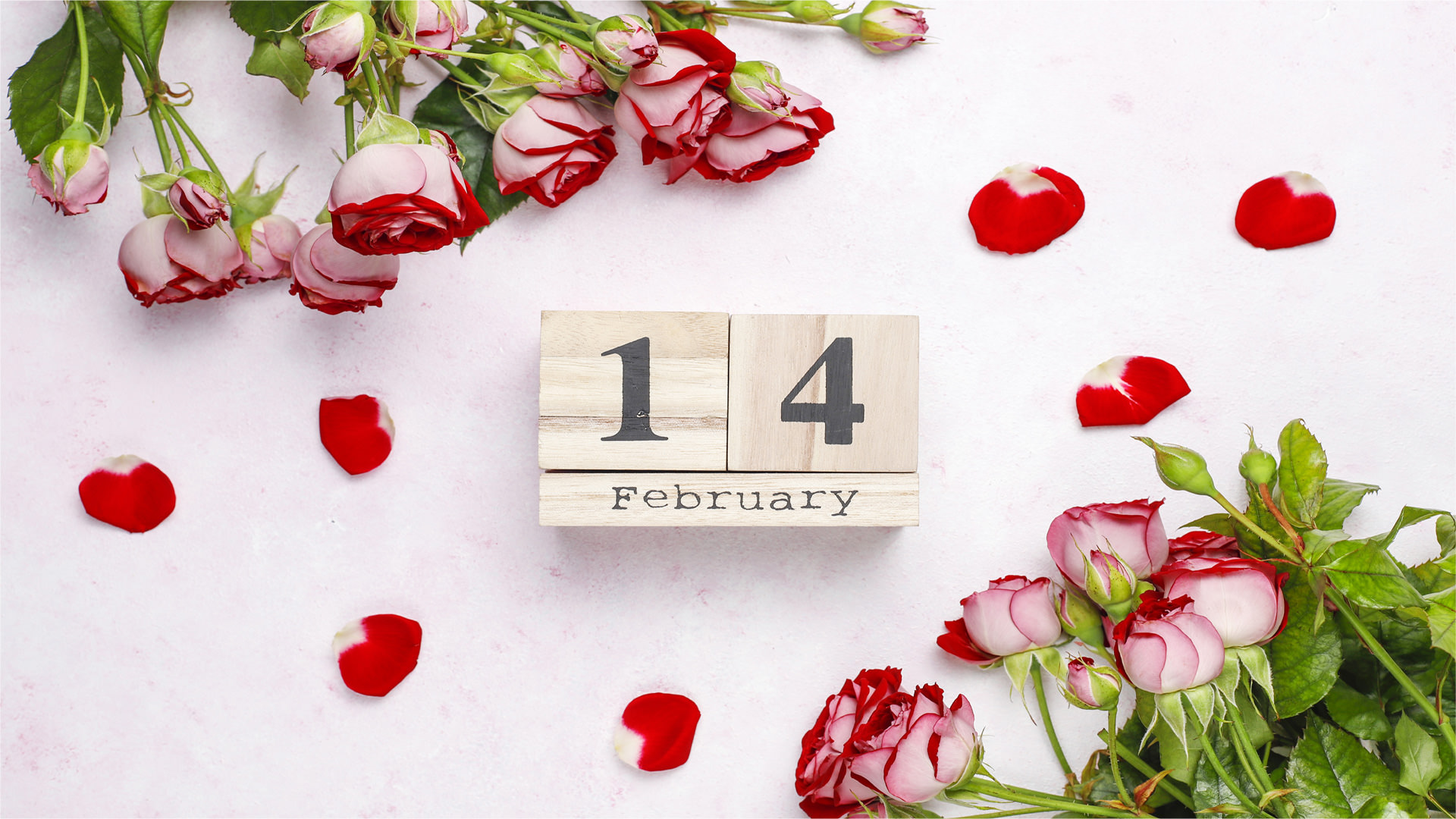14th Feb Display Wallpaper with Roses