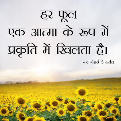 Phool Par Hindi Quote