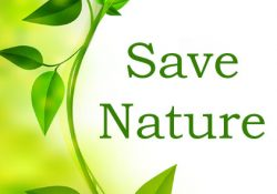 Save Nature DP