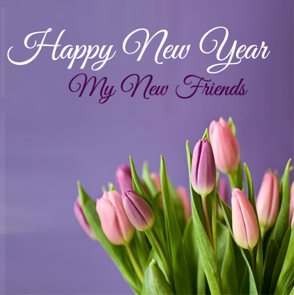 Beautiful Purple Pink Tulips Flower New Year Image for Friends
