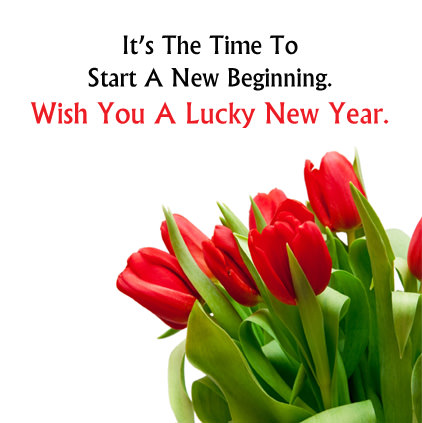 Red Tulip Flower with New Year Status Quote